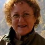 Lara Steinel